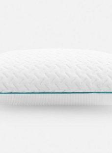 Hyde & Sleep Blueberry Pillow Pair